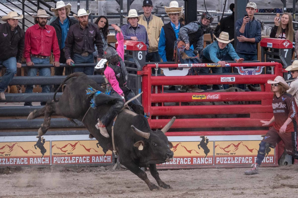 Wyoming Cowboys datant
